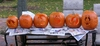 Group_pumpkins